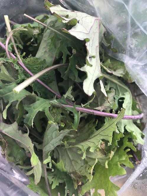 Kale 1/2 pound