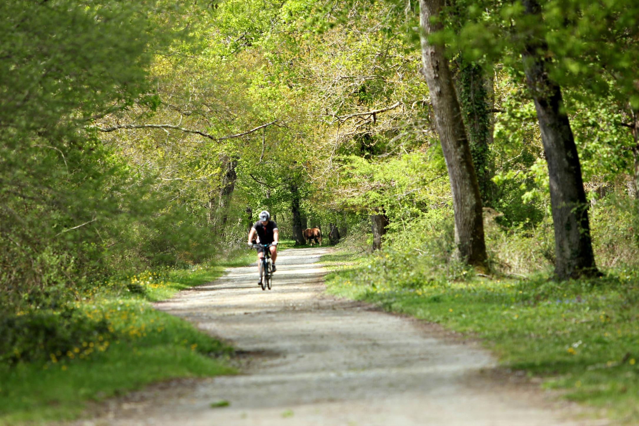 Balade Vélo Adour