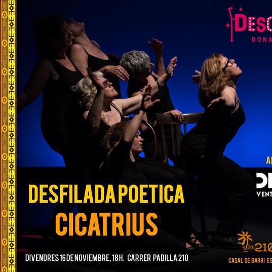 cartel desfilada poetica Cicatrius.jpg