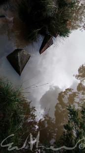 Swollen River - 2019
