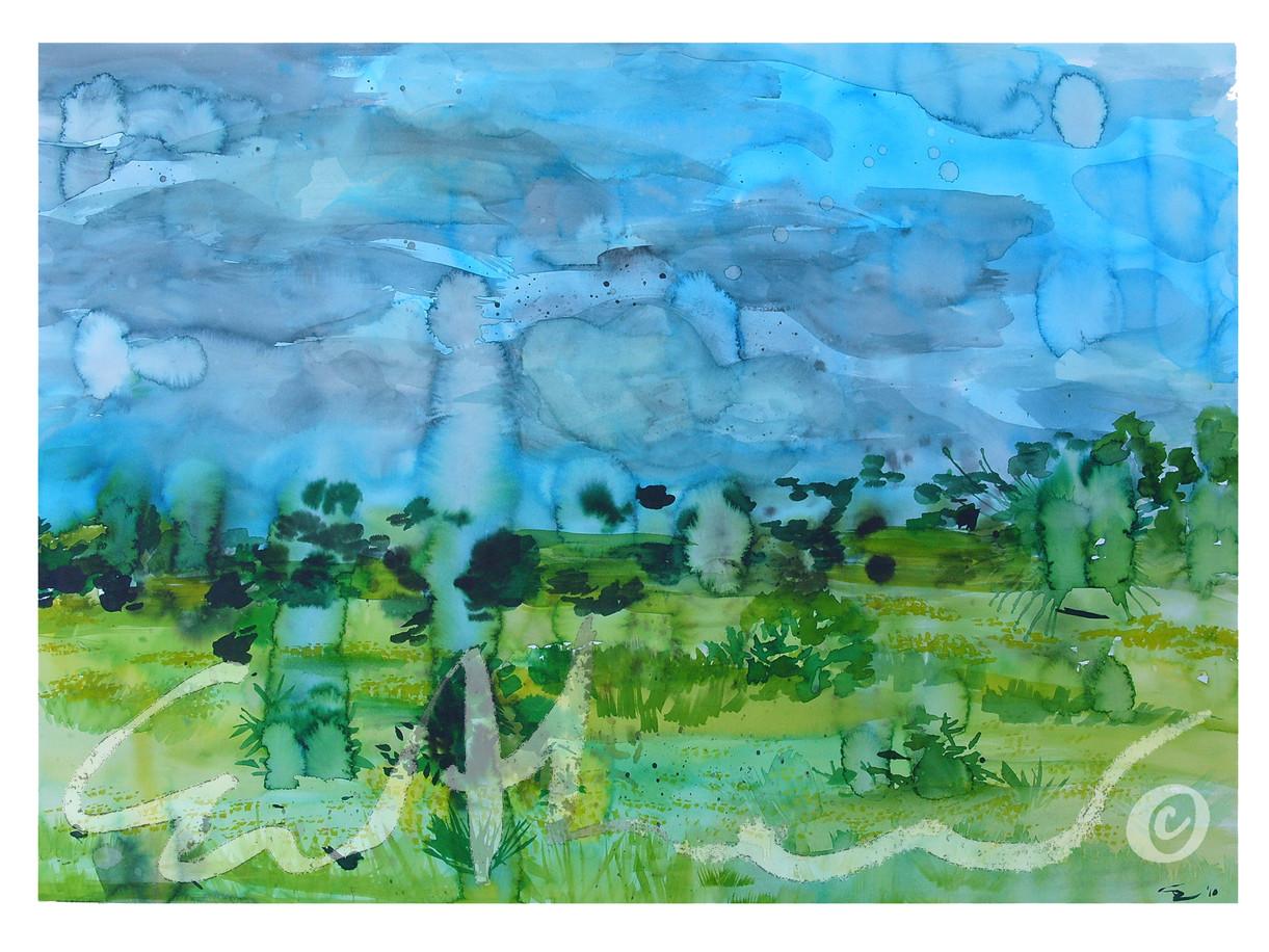 St Albans Landscape - 2010
