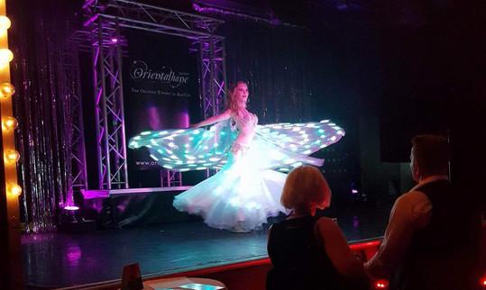 11 - LED Show La vie en Rose Berlin