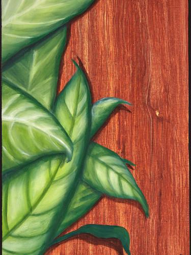 Plante matiere bois.