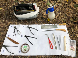 5 Bonsai tools