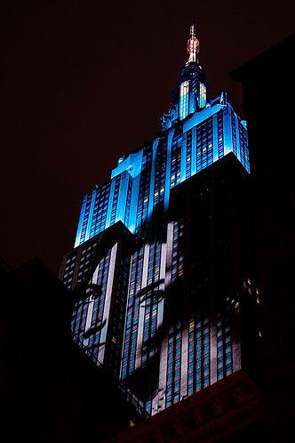 BLUE EYES (P. Roux de Bézieux)