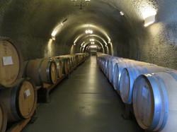 Wine Cellar Cave
