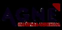 logo_agne_clipped_rev_2.png
