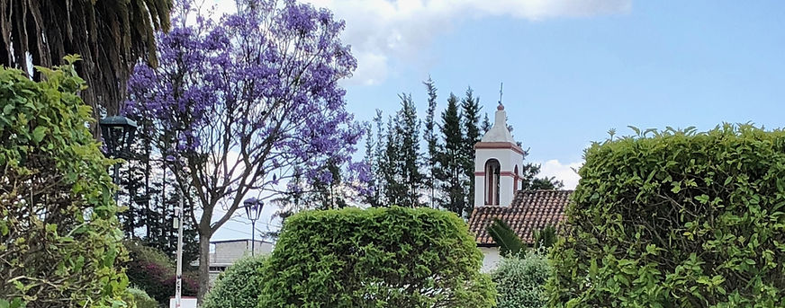 IMG_1970 Parque Central - Iglesia 1.jpg