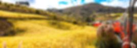 maravillas_gal_01-1024x682.jpg