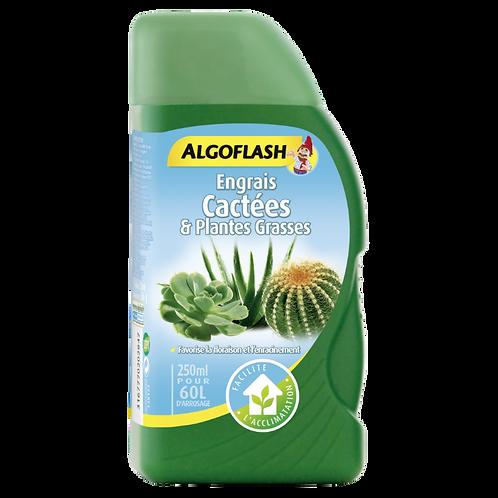 Algoflash engrais pour cactus & plantes grassess