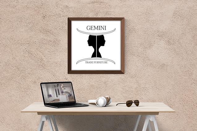 Gemini Frame.png