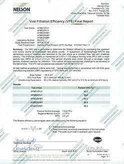 VFE Report_Stamped.jpeg