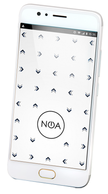 Noa Element N2