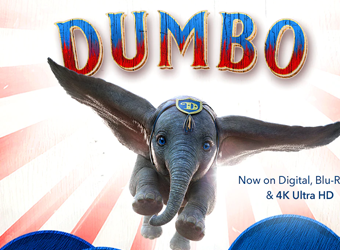Download Dumbo Bluray Torrent