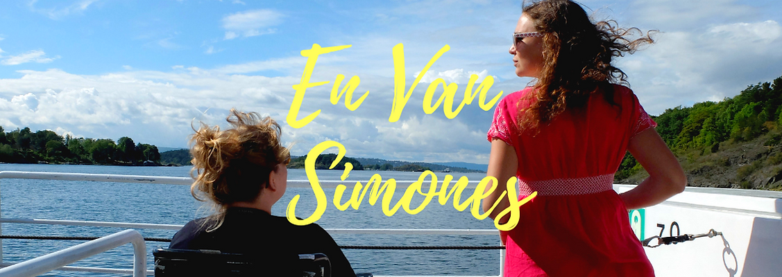 En Van Simones.png
