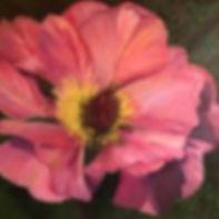 Rose papaver.jpg