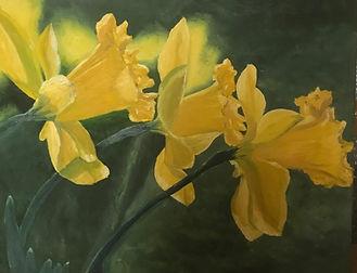Narcis 50x40 cm.jpg