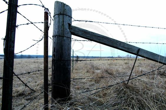 Barb wire fence - logo.jpg