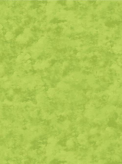Songbird - Raspberry - 4673-71