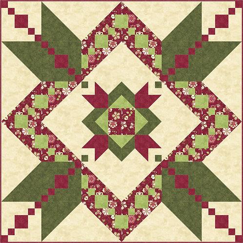 Pattern - #16 Christmas Star