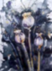 5-DSC_0169.jpg