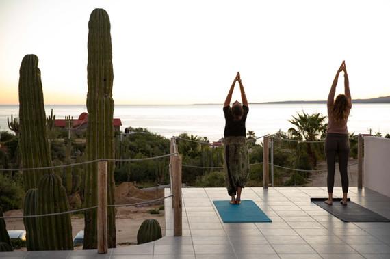 La ventana hostel yoga y meditación.