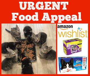 Urgent Food Appeal!