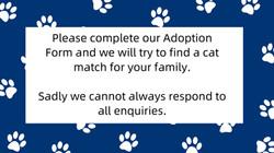 Adoptions Info