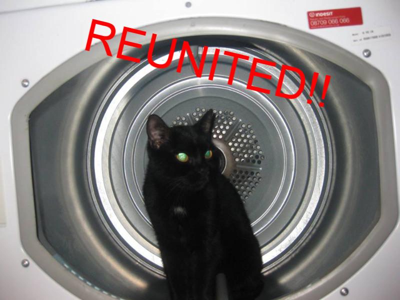 Black Cat Crownhill_edited.jpg