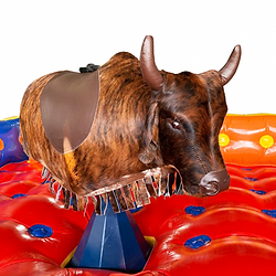 touro-mecanico-ulala-brinquedos-25.png