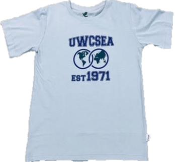 UWCSEA Grey T-Shirts for Boys