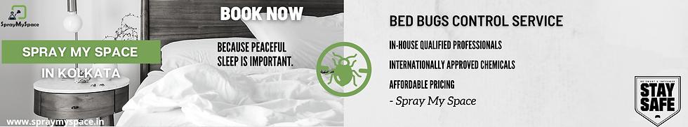 SprayMySpace Bed Bugs Control Kolkata.pn