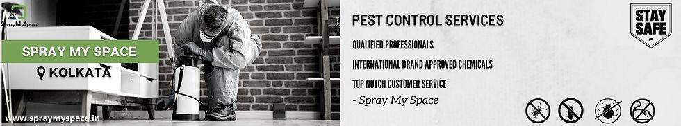 SprayMySpace Pest Control Kolkata.jpg