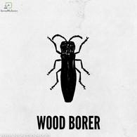 WOOD BORER Pest Control Kolkata.jpg