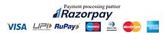 payment partne.PNG