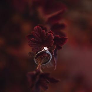 enagagment ring, fall engagement