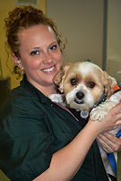 pet grooming, dog grooming, cat grooming, John Gagnon's Pet Resort, Pet Nail Trimming, Pet Feet Trimming, Pet Ear Cleaning