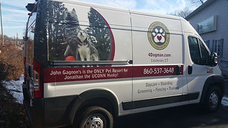 Jonathan the UCONN Husky, John Gagnon's Pet Resort, Dog Groomer, Pet Groomer, Mascot Dog Groomer, Show Dog Groomer