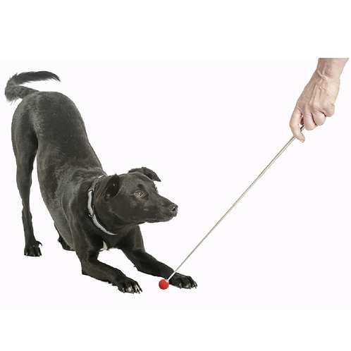 Retractable Target Stick