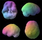 healthy-brain.jpg