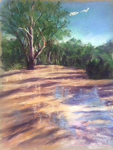 A Run in the River
