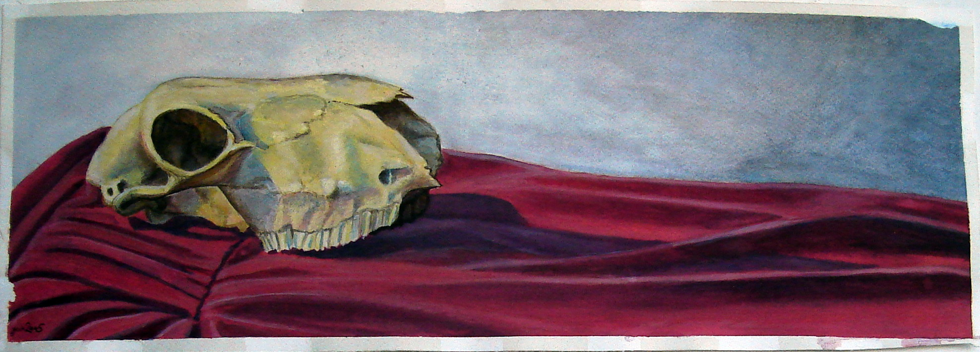 Skull on Red Drapery