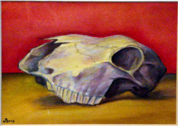 Small Red Skull