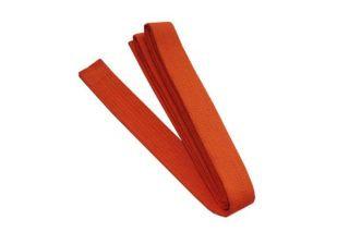 Little Kubz Orange Belt (1st Kub)