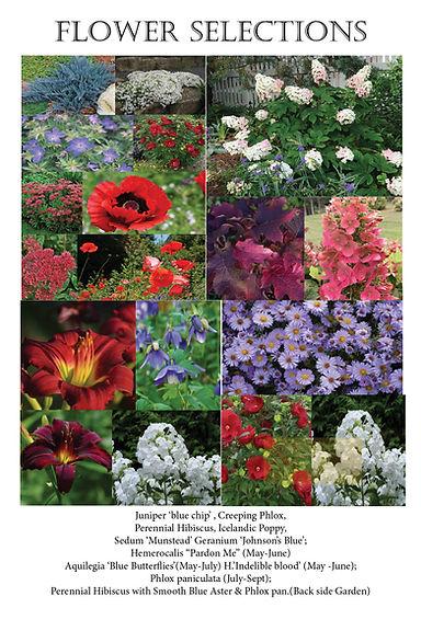 LG flower selections.jpg