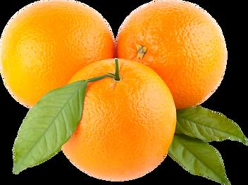 orange_PNG778.png