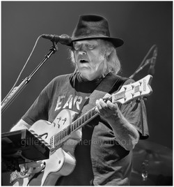 neil young9