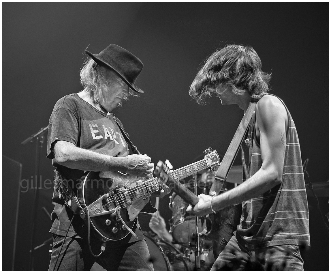 neil young14