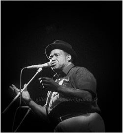 Willie dixon Salon de provence 1983