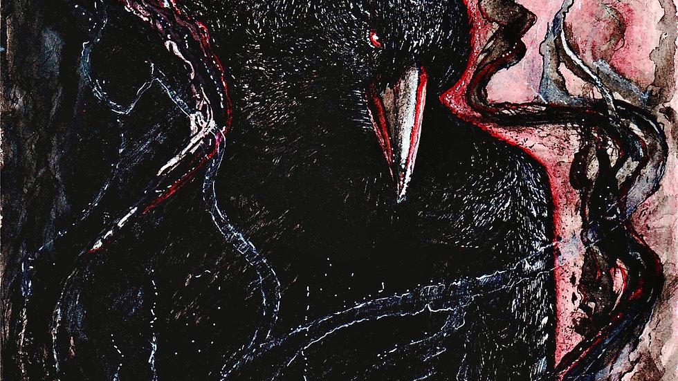 Poe's Raven